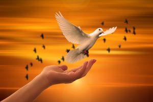 פעולות קטנות ומשמעותיות לחיזוק הנפש
